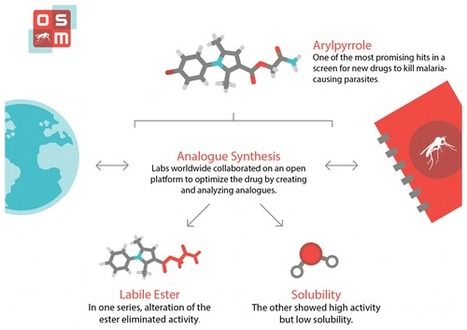 Open Source Drug Discovery: Highly Potent Antimalarial Compounds Derived from the Tres Cantos Arylpyrroles | Natural Products Chemistry Breaking News | Scoop.it