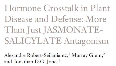 Hormone Crosstalk in Plant Disease and Defense: More Than Just JASMONATE-SALICYLATE Antagonism | plant defense | Scoop.it