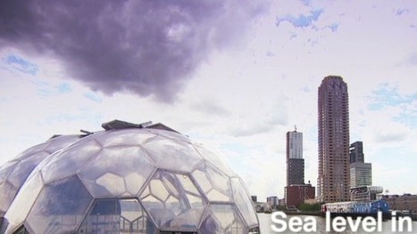 Can Rotterdam become the world's most sustainable port city? | Sustain Our Earth | Scoop.it