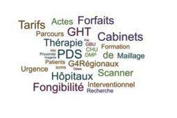 Le Livre blanc de l'imagerie médicale en France - JFR 2016 | e-Santé Bretagne | Scoop.it