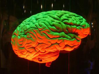 Galileo - Giornale di Scienza | Come il cervello affronta le nuove esperienze | PsicoLogicaMente | Scoop.it