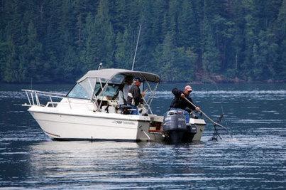 BC Salmon Fishing - Chinook & King Salmon - Fly Fishing | Dent Island | dentisland | Scoop.it