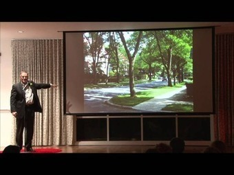 "Watch ""Street Trees 