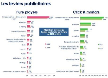 Quelles stratégies e-commerce pour réussir en 2014 ? : Capitaine ... | Webloyalty | Scoop.it