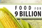 Food for 9 Billion - A Year-Long Series | YOUR FOOD, YOUR ENVIRONMENT, YOUR HEALTH: #Biotech #GMOs #Pesticides #Chemicals #FactoryFarms #CAFOs #BigFood | Scoop.it