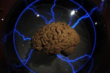 Eric Sadin : «Le cerveau ne pourra jamais être réduit à des grilles de données» | METROPOLIS STUFF | Scoop.it