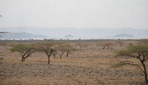 Kenya : le plus grand projet éolien en Afrique sur les rails | Africa Business | Scoop.it