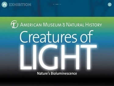 Best Free iPad App of the Week: Creatures of Light — iPad Insight | #edpad | Scoop.it