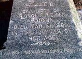 Quahog.org: Grave of Nellie L. Vaughn | My Heavy Metal Blog | Scoop.it