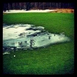 » Agua accidental en green   golf   Scoop.it