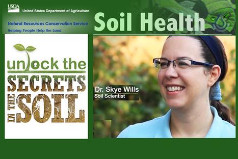 Les propriétés dynamiques du sol peuvent apporter le plein potentiel des terres agricoles rappelle S.Wills du NRCS | Comprendre le réel intérêt de produire une agriculture BIO en France plutôt que d'importer des produits présentant un label pas vraiment Certifié. | Scoop.it