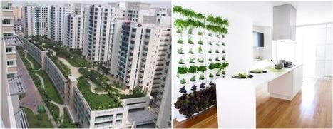 Casa ecológica: Huertos alternativos - Arquitectura y Urbanismo ... | Cultivos Hidropónicos | Scoop.it