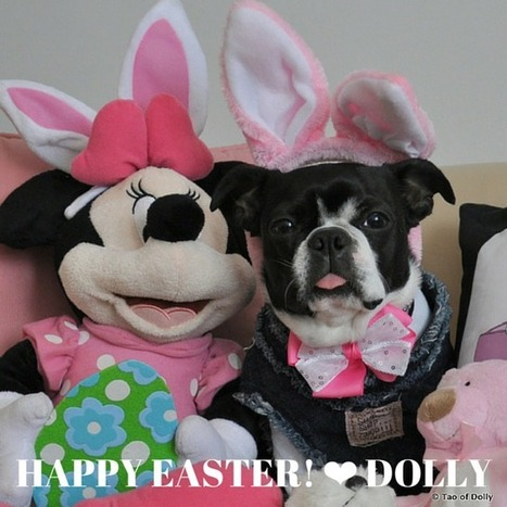 DOLLY AND MINNIE | Dolly Nirvana | Scoop.it