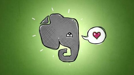 """The overwhelming """"everything"""" — Evernote Guide 