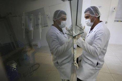 El uso de un pez, estrategia en México contra el mosquito transmisor del zika | Biología de Cosas de Ciencias | Scoop.it