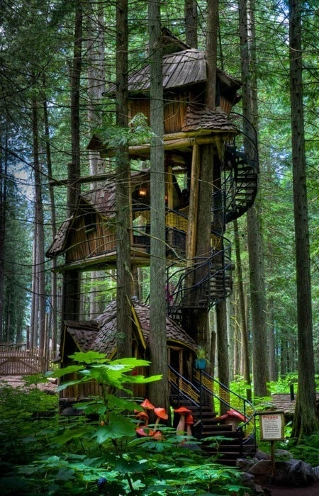 Three Story Tree House, British Columbia, Canada | BEATIFUL | Scoop.it
