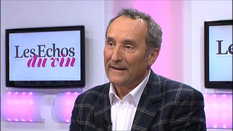 M. Veyrier : '40% des acheteurs de vignoble français sont étrangers'   Le vin quotidien   Scoop.it