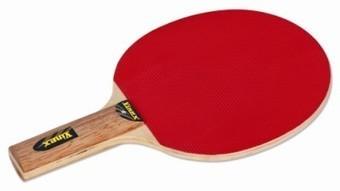Buy T.T. Bat, Practice Table Tennis Bats, Training TT Bat, Online, India   Sports and Fitness Equipment   Scoop.it