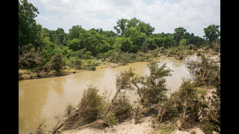Contractors to begin cleaning up Memorial Day flood debris from Blanco River | exTRA by the Trinity River Authority of Texas | Scoop.it