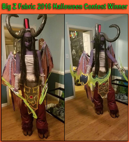 Big Z Fabric 2016 Halloween Costume Contest Winner | Fabric Shopping Online | Scoop.it