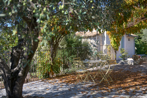 You can do yoga at Julia Child's house | Wellness | Scoop.it