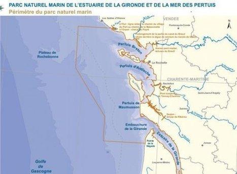 Signature d'un parc naturel marin dans l'estuaire de la Gironde et au large de la Charente-Maritime – Gironde - France 3 Aquitaine   Revue de presse Pays Médoc   Scoop.it