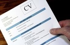 Faire un CV : nos conseils en vidéo | CIDJ.COM | Culture Mission Locale | Scoop.it