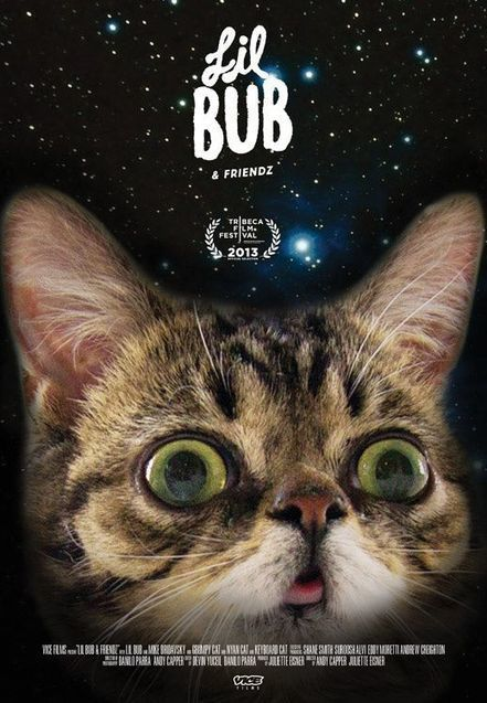 Cat movie 'Lil Bub & Friendz' headed to Tribeca Film Festival - Fox News | Machinimania | Scoop.it