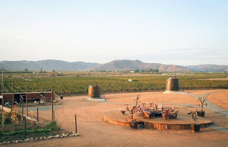 "We've been raving about the Valle de Guadalupe for years, but now we can say that it is literally ""in vogue""... 