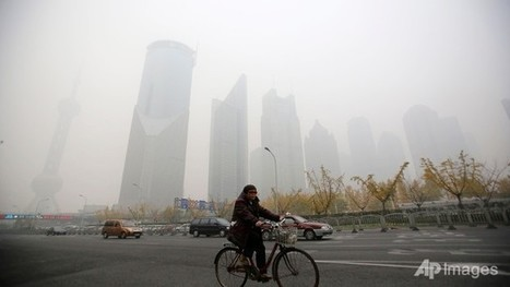 Heavy air pollution hits China's Shanghai, delaying flights - Channel NewsAsia | EconMatters | Scoop.it
