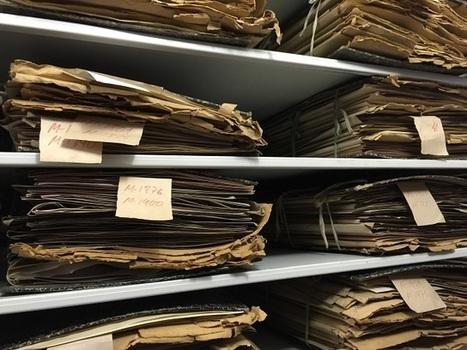 Un tesoro en el archivo de plantas muertas   Educación y Formación   Scoop.it
