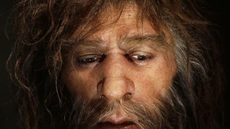 Oldest Neanderthal DNA found in Italian skeleton | BS2040: Bioinformatics | Scoop.it