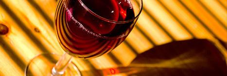 Terra Vitis, une viticulture saine | Terra vitis toujours tourné vers le futur | Scoop.it