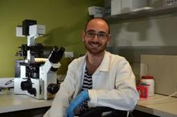 Scientist using green materials to help early disease detection | Voxy.co.nz | NanoBiomedical Diagnostics | Scoop.it