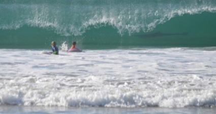 Giant Shark Spotted in Background of Pic of Kids Playing in Ocean (PHOTO) | It's Show Prep for Radio | Scoop.it