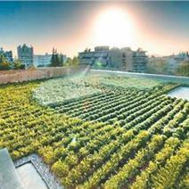 "15 million euros for ""green rooftops"" 