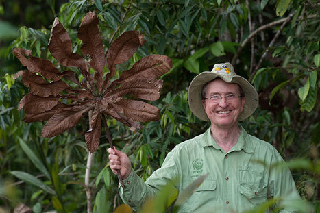 Lovejoy, 'Godfather' of Biodiversity, Reflects On 50 Years in the Amazon   Rainforest EXPLORER:  News & Notes   Scoop.it