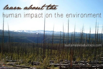 Human Impact on the Environment - Sustainable Baby Steps | Pandy research | Scoop.it