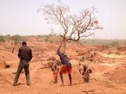 30 morts dans l'éboulement d'une mine d'or en Guinée | Guinée 7 | Or infos | Scoop.it