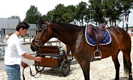 Salon de l'agriculture : Equitaine mise sur le bon cheval ! | Agriculture en Dordogne | Scoop.it