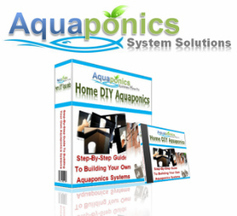 Aquaponics - Grow Organic Food The Easy Way   Wellington Aquaponics   Scoop.it