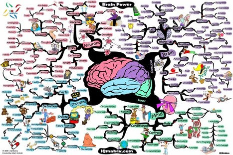 Brain Power | Powers to Achieve | Scoop.it