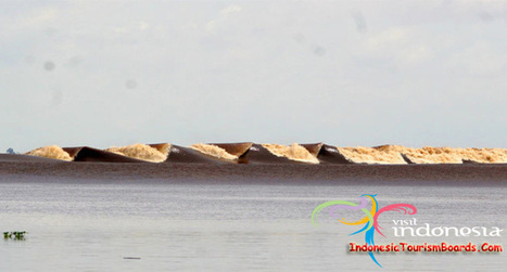 Bono Tidal Bore Magnificent Seven Ghost - Indonesia Tourism Board | Dwell Articles | Scoop.it