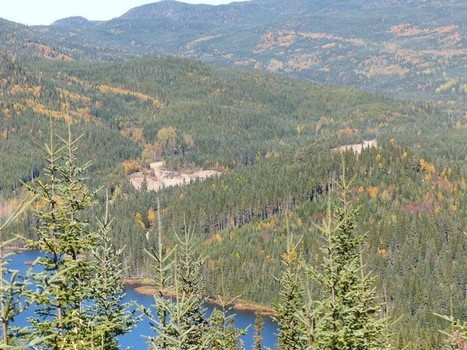 La Forêt Montmorency - Laurentides - Québec - Canada | Faaxaal Forum Photos gratuite Faune et Flore | Scoop.it