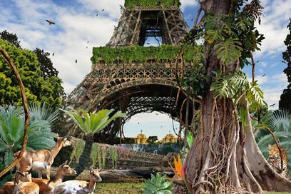 Comment Paris devra se transformer contre les canicules | Nature, urbanisme et citoyenneté | Scoop.it