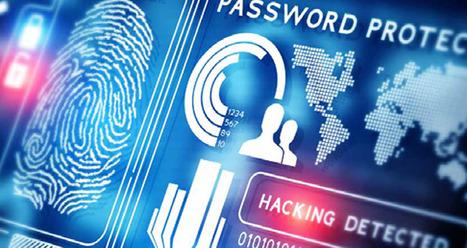 Comment la cyber sécurité peut devenir le système immunitaire de votre entreprise | Veille Cybersécurité | Scoop.it