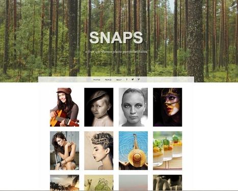 Snaps, un thème WordPress pour photographe - Labo JNG WEB | Outils de veille & Curation tools | Scoop.it