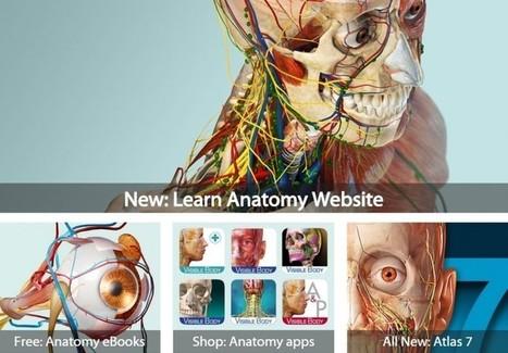Recursos para navegar por el cuerpo humano en 3D | RECURSOS TIC DE HAROTECNO | Scoop.it