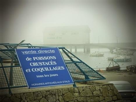 A storm in a cup of tea: La Pointe de Trévignon | Blog Bretagne | Scoop.it