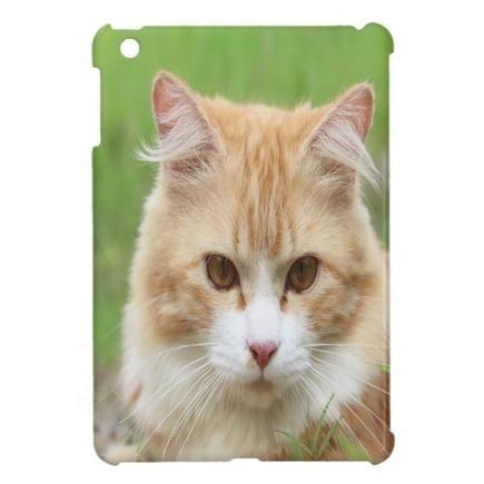 Cute Cat iPad Mini Cases   Adriane Designs   Scoop.it